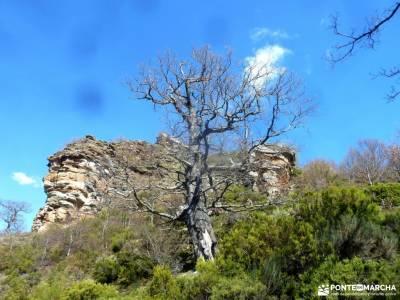 Alto Campoo;Parque Natural Saja-Besaya;parque nacional picos de europa circo de gredos rincon romant